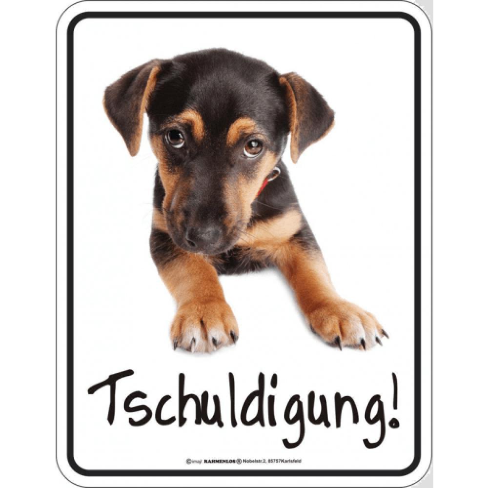 funschild_dackelblick.png